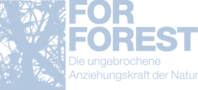Logo For Forest